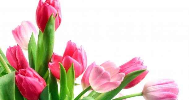 cadeaux et fleurs de la fontaine livraison de fleurs domicile. Black Bedroom Furniture Sets. Home Design Ideas